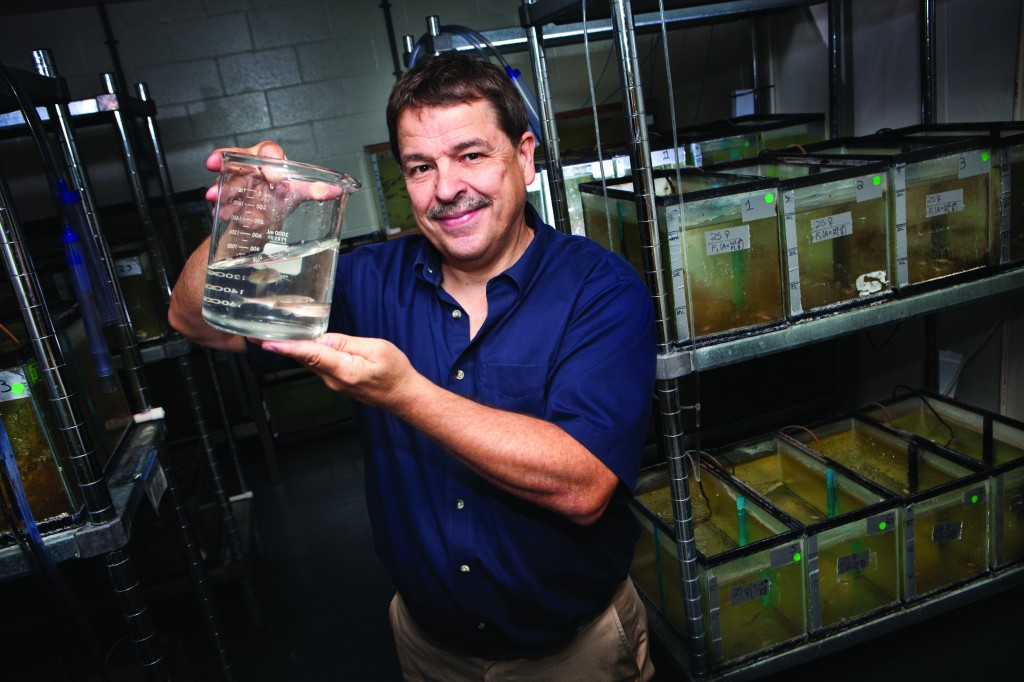 Alan Kolok, Ph.D., interim director of the Center for Environmental Health and Toxicology in UNMC's College of Public Health, displays UNMC's sentinel fish.