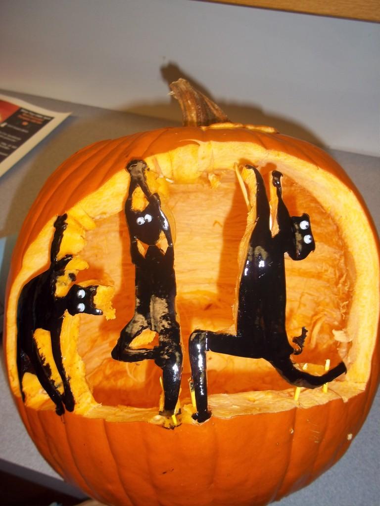 pumpkin yoga cats